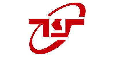 Taiwan King Strong logo